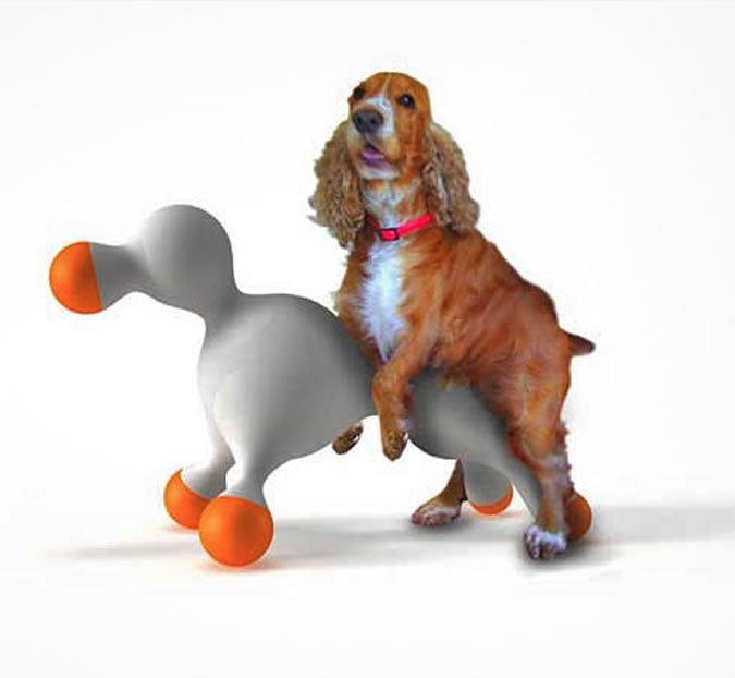 Dog and blow-up doll