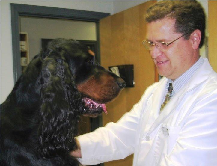 Veterinary geneticist Jerold Bell