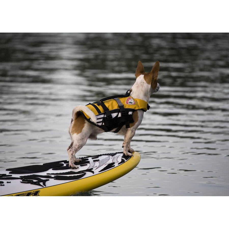 EzyDog Flotation Device