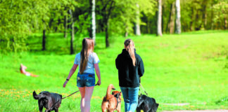 Two Girls Walking Their Dogs In The Park. Russia. Gatchina. May