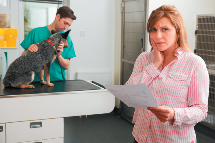 Don't be caught short. Buying health insurance for your dog will protect you in the crunch.